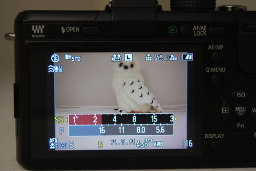 The shutter/aperture meter appears whenever you're in shutter/aperture priority or manual. As one setting is changed, the other shifts in kind, and settings that the GF1 thinks is inappropriate is marked out in red.