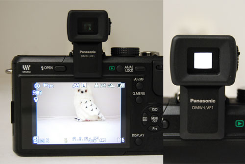 We preferred using the large LCD for shooting compared to the much smaller live view finder.