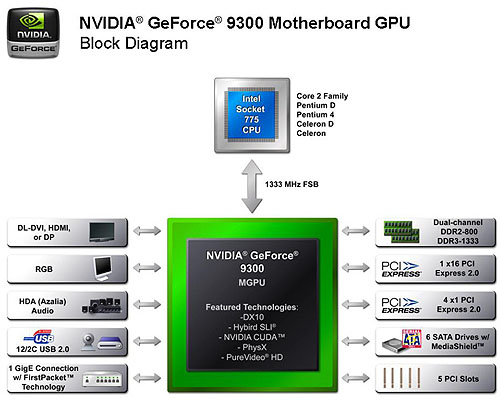 The GeForce 9300 mGPU block diagram. NVIDIA also has a slightly more powerful 9400 mGPU that is similar to this, but with faster stream processor and memory clocks.