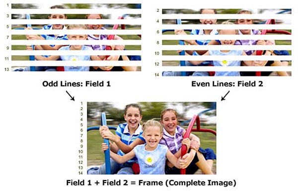 Simply put, interlaced scanning uses two fields to create a single frame:- one field for the odd lines and the other for even lines.