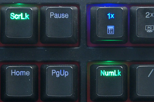 Instead of blue, the Caps Lock, Num Lock, and Scroll Lock keys have green backlights; and they're not affected by the Fn + F9 to F11 key presses. The green backlight only turns on when the key is activated (e.g. Caps Lock on/off).