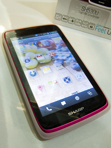 A large screen, dual-SIM card support, Android Ice Cream Sandwich, dual-core power. How's that for a smartphone that goes for just about PhP 15,000?