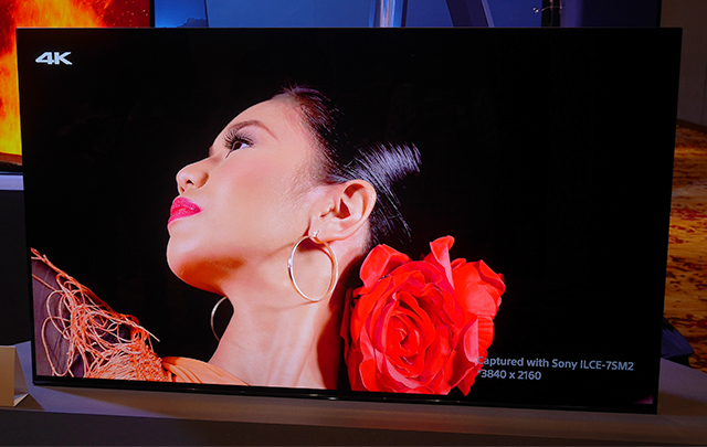 Sony AE1 55-inch variant